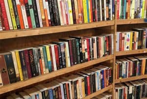 shelves of books at the Arlington Public Library